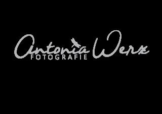 Antonia Werz Fotografie